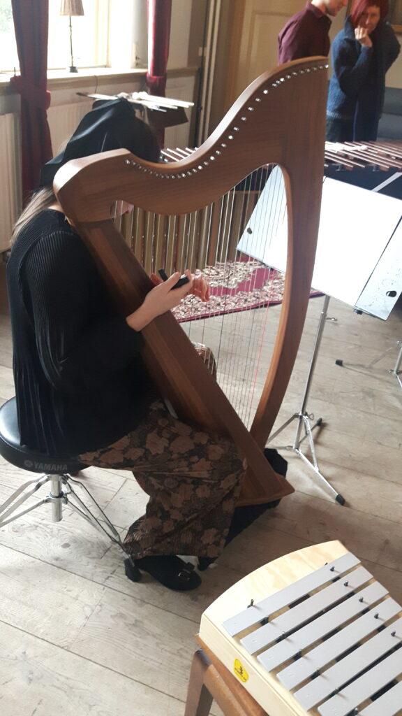 Jelena Veskovic met Keltische harp